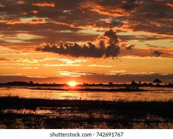 Sunset in wildlife Reserve, Okavango Delta, Botswana - Sunset