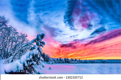 Sunset winter forest sky clouds landscape. Winter sunset forest sky panorama. Winter snow sunset forest sky. Sunset sky clouds in winter forest