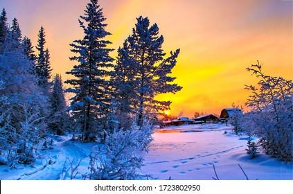 Sunset winter snow nature scene. Winter sunset forest village scene. Sunset winter snow scene