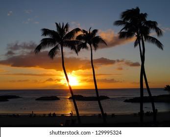 Sunsets on Ko Olina lagoon between coconut trees over the pacific ocean on the island of Oahu, Hawaii.
