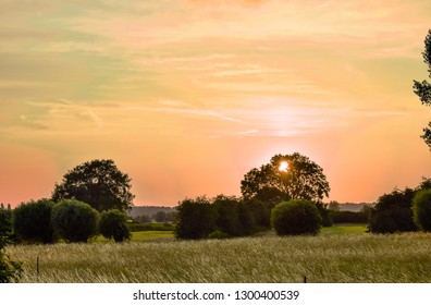 sunset/sunrise over the fields, the golden hour