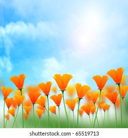 Sunshine background with flower