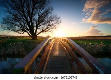 sunshine behind wooden bridge over river, Netherlands