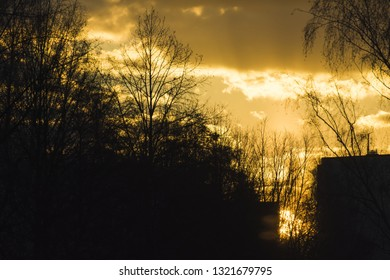 Sunshine in the clouds, contrast and beautiful scenery, beautiful weather and life. Foreground silhouettes of trees.