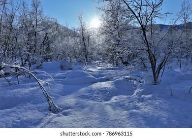 Fresh Snow Computer Background Images Stock Photos Vectors Shutterstock