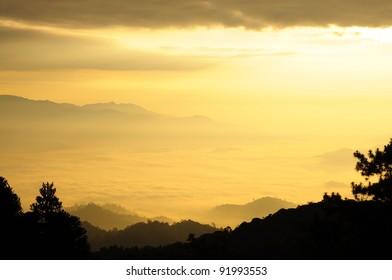 Sunshine over the mist forest national park, Thailand