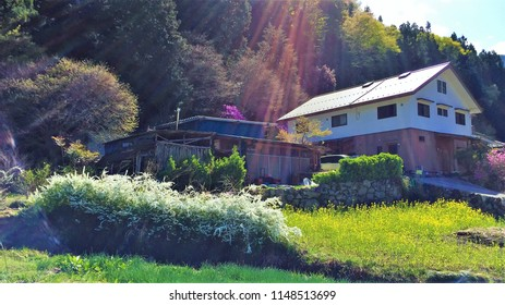 Sunstreaked photo of Japanese country house