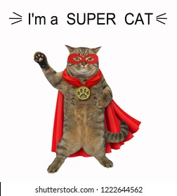 The super cat is wearing a red cloak, a mask and a golden locket. White background.