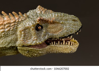 Super macro Allosaurus dinosaur roaring and in attack position with white background - mouth open