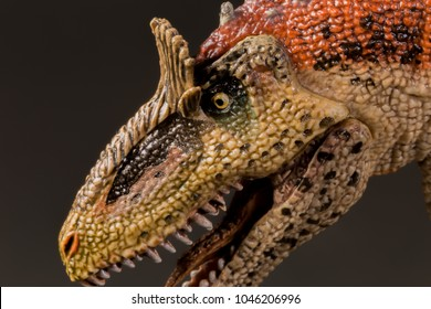 Super macro close up Cryolophosaurus dinosaur in attack position with dark background mouth open roar