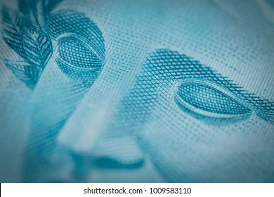 Super macro closeup on Brazilian money one hundred bill
