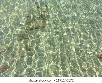 The super transparent and clear sea water and sandy seabed texture. The sunlight on the surface of the water. Black Sea. Kinburn foreland, Ukraine, Nikolaev region.