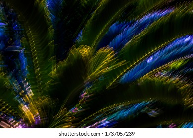 Super trippy surreal psychedelic multicolor abstract motion blurred Cycad plant background / texture