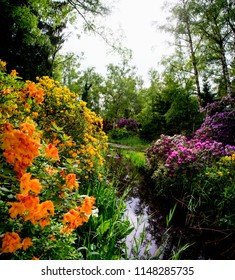 Superb panorama -lovely park with a galaxy of clusters of multi-colored  awesome blooms. The  orange rhododendrons in the foreground add a touch of grandeur. The reflections look amazing.