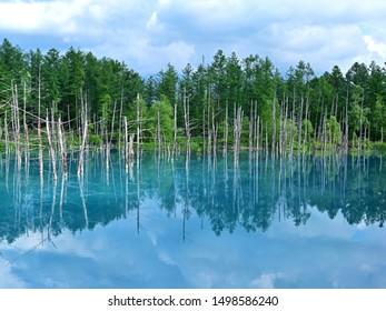 Superb view of Shirokane Aoi ike (Blue pond) with blue sky at Biei, Hokkaido - Shutterstock ID 1498586240