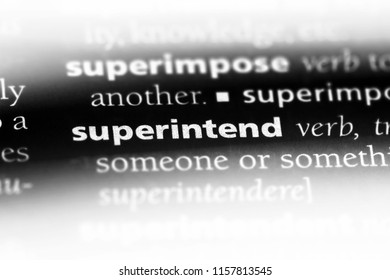 superintend word in a dictionary. superintend concept.
