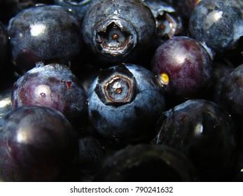 Supermarket Fresh Blueberries