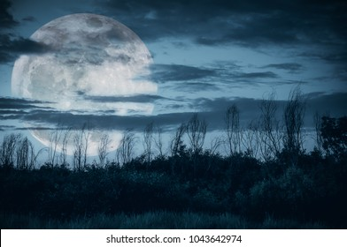 Supermoon. Night landscape of sky with dark cloudy and moon over silhouette of trees in a wilderness area, outdoor in gloaming time. Serenity nature background. The moon taken with my camera.