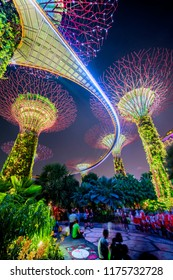 Supertree grove, Garden by the bay, Singapore, July 27, 2018