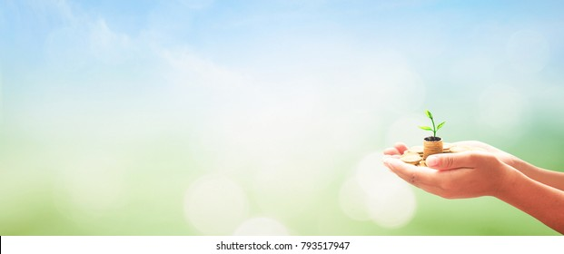 Support to investment concept: Businessman hands holding stack of coins and small tree over nature background