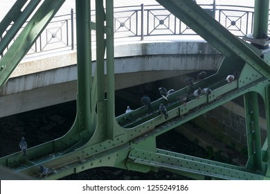The supporting framework of the Wuppertal suspension railway.