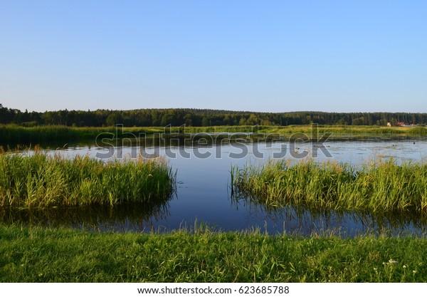 Suprasl river in summer, Podlasie, Poland