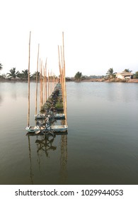 Surface aerators flow on shrimp pond farm