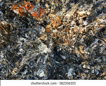 The surface of the Ashes.