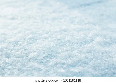 the surface is covered with snow