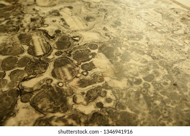 Surface damaged by chemicals creating black and white, sepia toned, pattern with strange bubbles and dust.