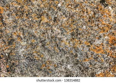 The surface of the granite stone overgrown with moss-colored
