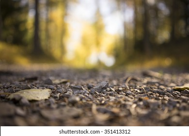Surface Level Low Angle View of Small Stones as part of Gravel Road in Isolated Forest Area in Tirol, Austria with Shallow Depth of Field and Selective Focus