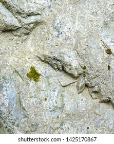 Surface of An Old Stone