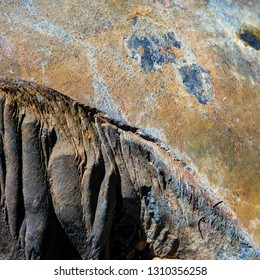 surface of quartzite stone. Sunny day. Web banner.