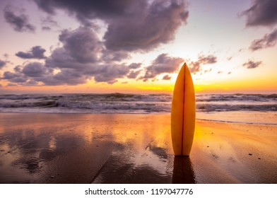 surfboard on the beach in sea shore at sunset time with beautiful light. water sport background