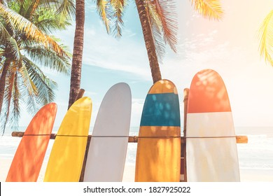 Surfboard and palm tree with blue sky on beach background. Travel adventure sport and summer vacation concept. Vintage tone filter effect color style.