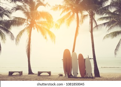 Surfboard and palm tree on beach double exposure with colorful bokeh sunset light texture abstract background. Summer vacation and sport extreme concept. Vintage tone filter color style.