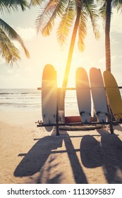 Surfboard and palm tree on beach background. Travel adventure sport and summer vacation concept. Vintage tone filter effect color style.