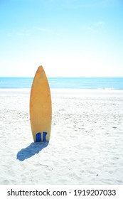 Surfboard stands on the beach with bright clear sky and horizontal line of seascape in background