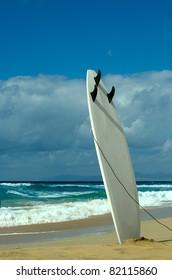 surfboards awaiting fun in the sun