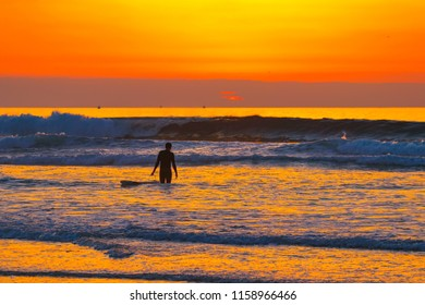 Surfer In Paradise