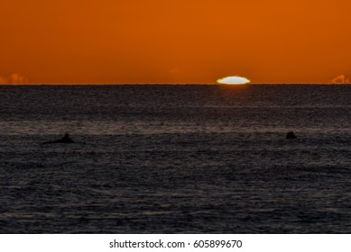 surfer silhouette watches elusive green flash resulting from an inferior mirage phenomenon during sunset - photo taken from magic island at ala moana beach park
