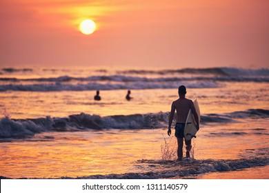 Surfer st sunset. Young man holding surfboard and walking to sea. Matara, Sri Lanka.