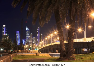 surfers paradise at night with palm tree in foreground (gold coast, qld, australia)