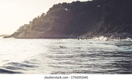 Surfers waiting a good wave in the Roc of Sant Gaieta, Tarragona, Spain