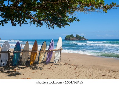Surfing  boards. Playa Cocles, Costa Rica.