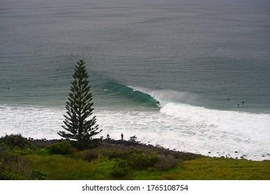 Surfing in Lennox Head, Australia