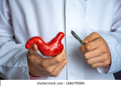 Surgeon held scalpel over anatomical model of human stomach, holding it in his hand against background of body in a white uniform. Concept photo surgical treatment of stomach ailments and procedures