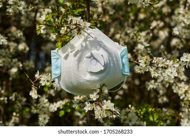 Surgical mask shown among spring blossoms, symbolising rebirth after the deadly coronavirus outbreak