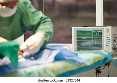 surgical procedure at a veterinary hospital